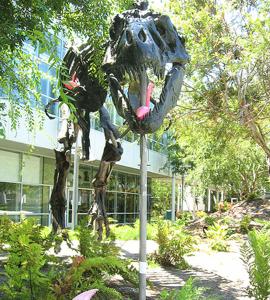 5 dinosaurio